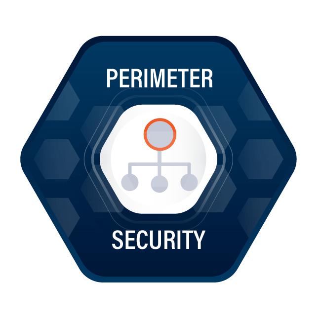 MSSCircle-PerimeterSecurity