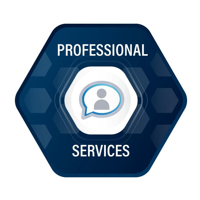 MSSCircle-ProfessionalServices